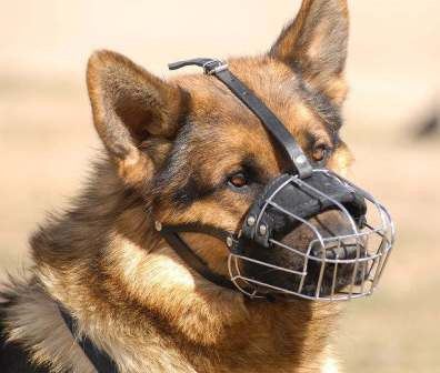 Basket-Wire-Dog-Muzzle-GSD-shepherd_LRG